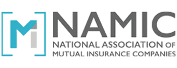 NAMIC - Logo